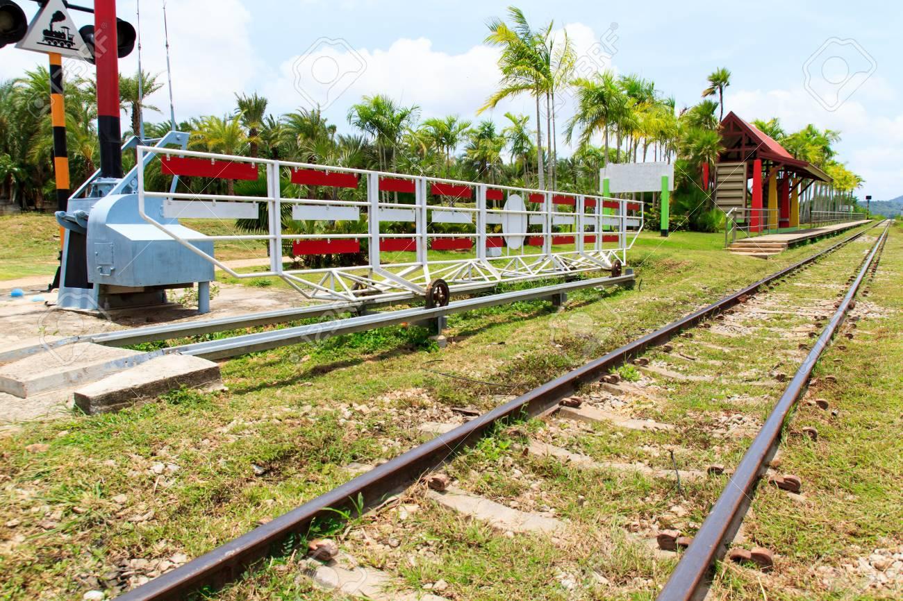 Railway line passing through the green plants Stock Photo - 21805221