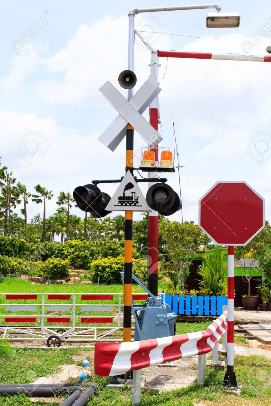 Railway line passing through the green plants Stock Photo - 21805247