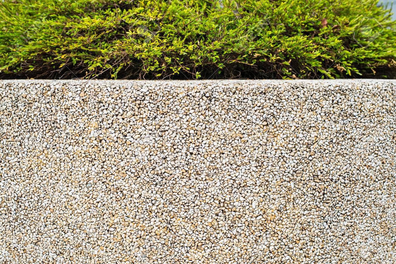 Old Yellow Terrazzo Wall Material With Green Plant Stock Photo