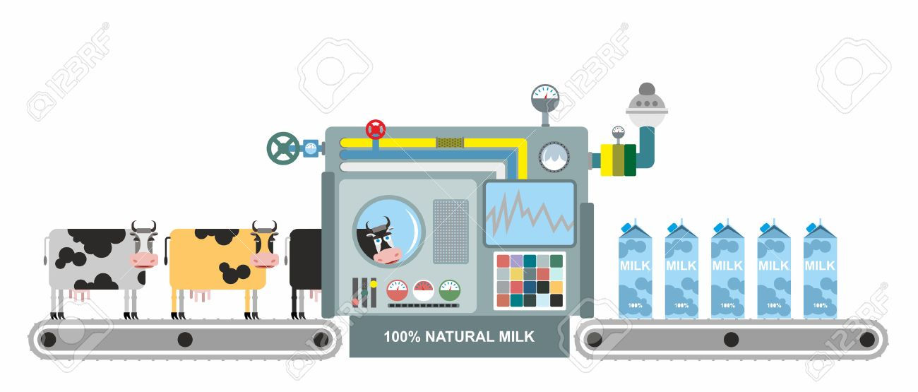 Infographics milk production. Stages of milk production from cows. Conveyor belt with cows. Natural product. Vector illustration. System production of dairy products. Apparatus for lifting milk - 41675886
