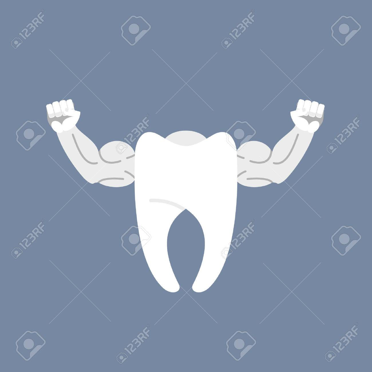 Strong healthy tooth. White clean tooth with big muscles. Logo for dentist clinic. - 43816999