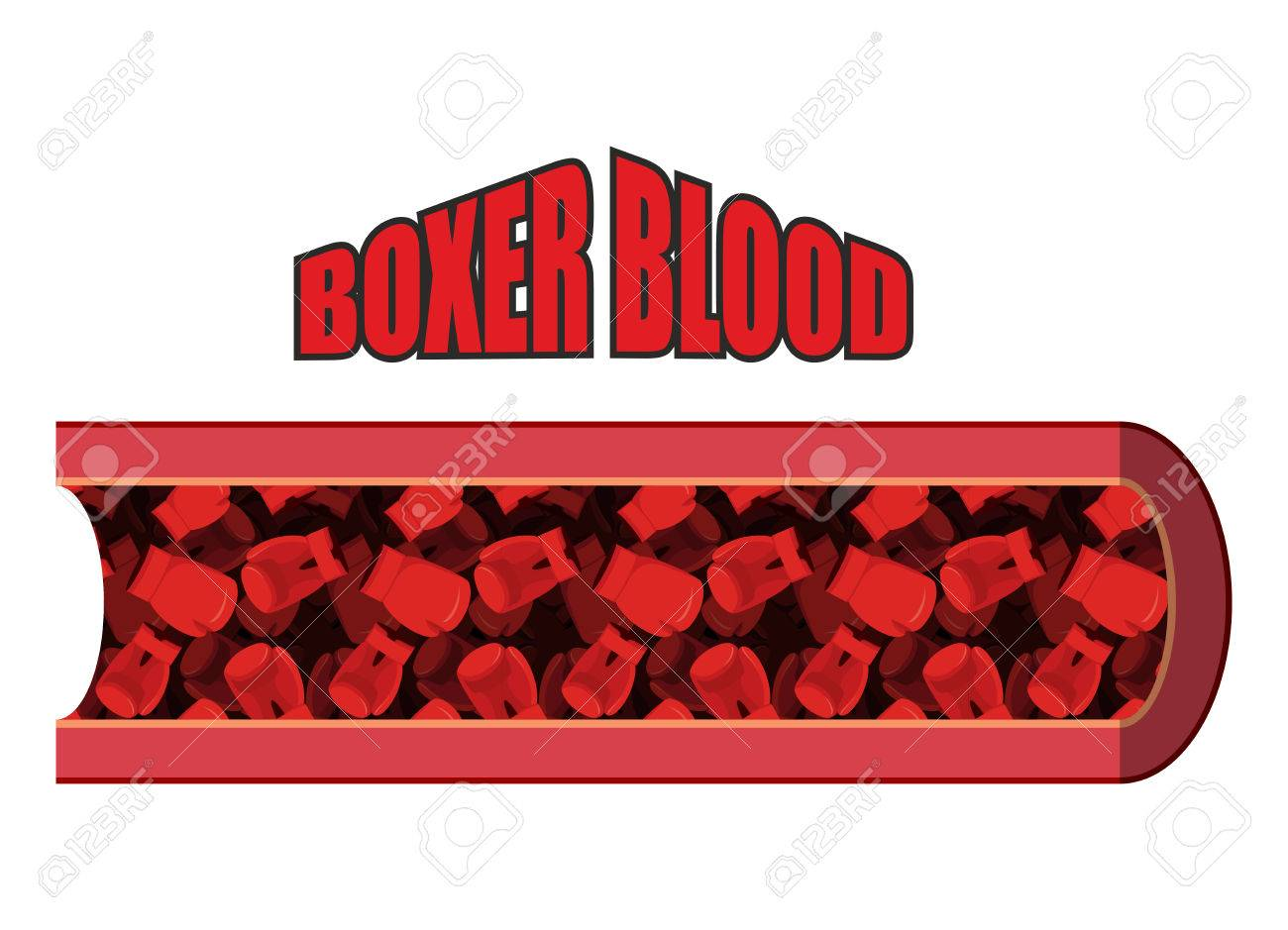 Boxer Sangre. Las Células Sanguíneas En Forma De Guantes De Boxeo ...