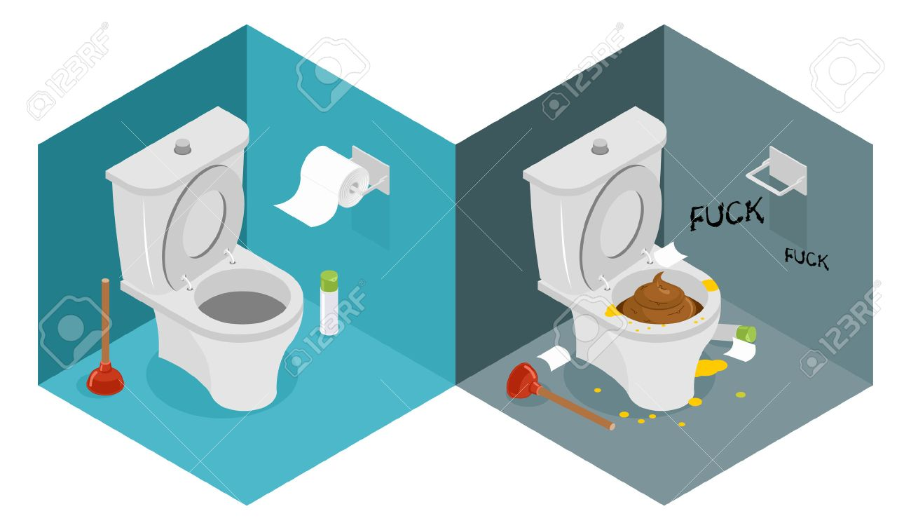 Clean and dirty toilet isometrics. New outhouse and plunger. Puddle of urine. Roll of toilet paper. Interior furnishings of restroom - 58537910