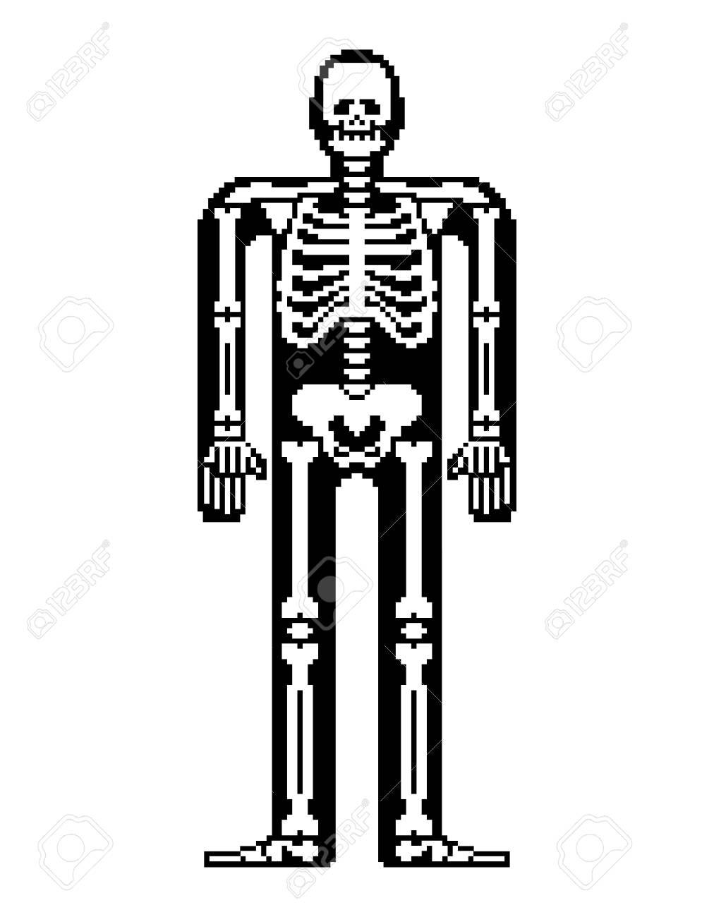 Skeleton Pixel Art Skull And Bones Anatomy 8 Bit Pixelate Pelvic