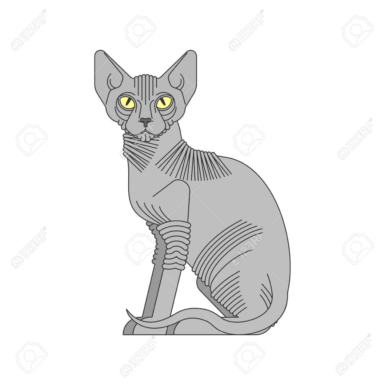 Sphynx Cat Isolated Hairless Cat Breeds Pet Vector Illustration Royalty Free Cliparts Vectors And Stock Illustration Image 147486016