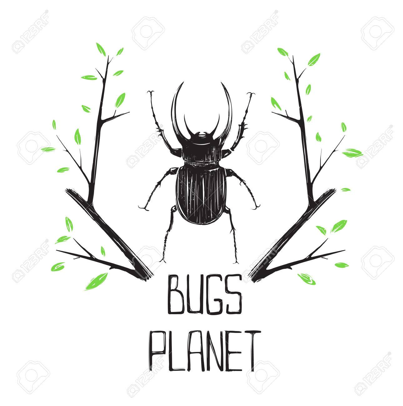 Big Black Beetle Insect and Nature Symbol Bugs and nature concept
