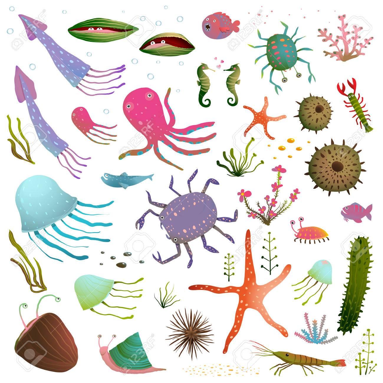 Sea Life Coloridos Animales Aislados En La Colección De Arte Del ...