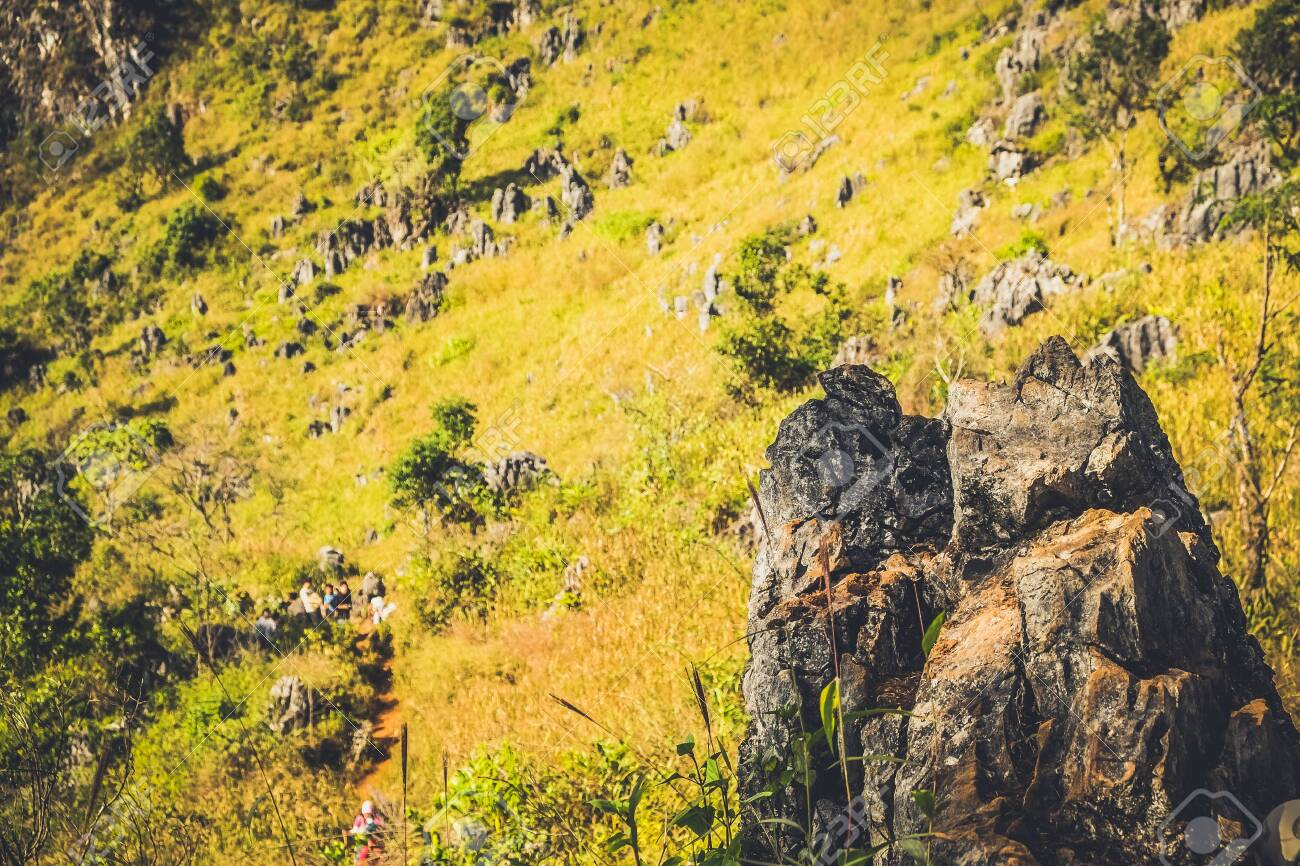 mountain hill with rocks grasses - 144145200