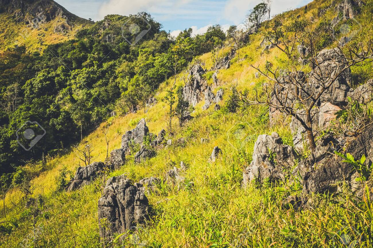 mountain hill with rocks grasses and clear blue sky background - 144043852