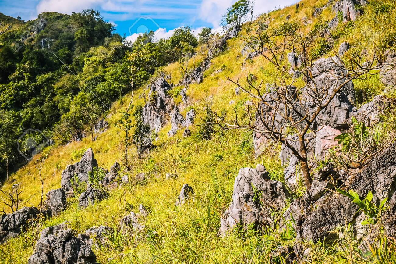 mountain hill with rocks grasses and clear blue sky background - 144043842