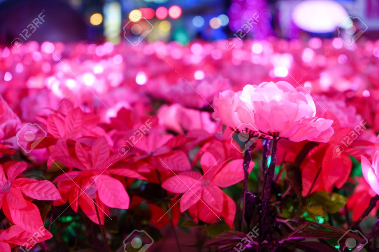artificial pink flower with light decorating - 144145209