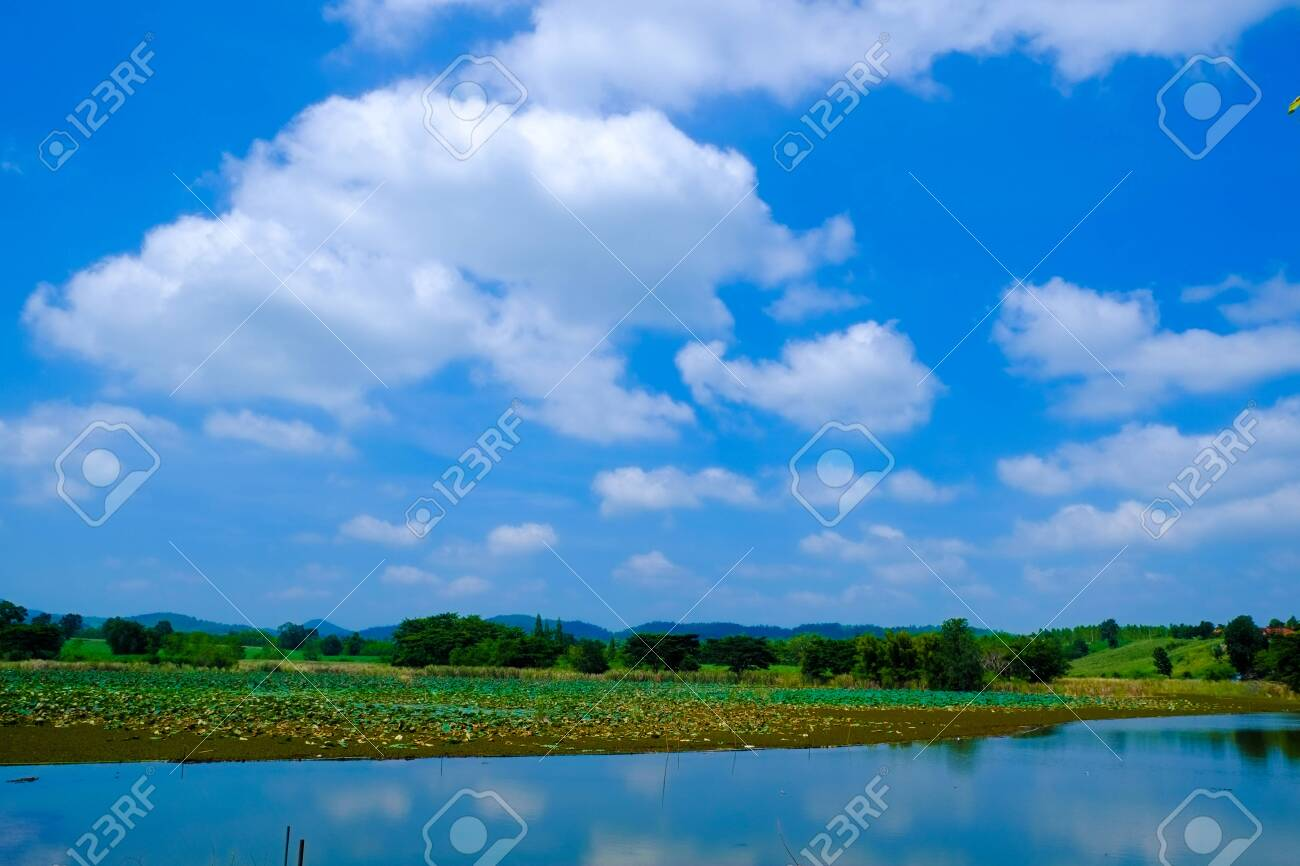 big lake with green field and blue sky - 144130936