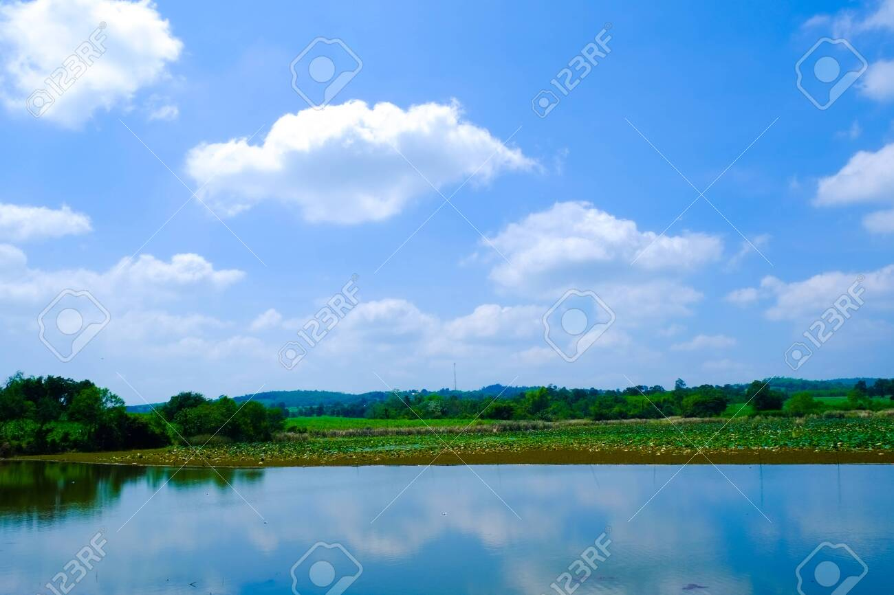 big lake with green field and blue sky - 144130937