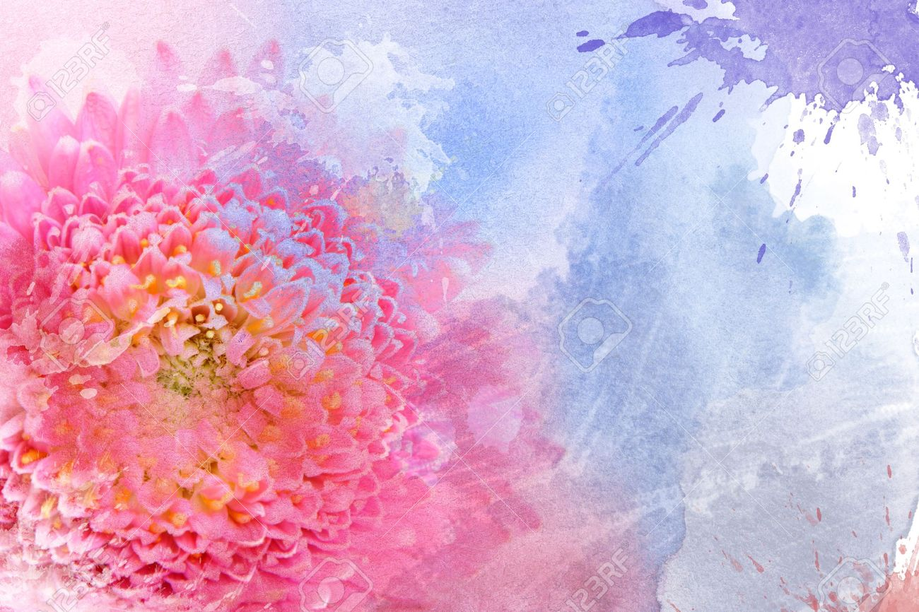 Watercolor pink flower, for backgrounds or textures Stock Photo - 13253947