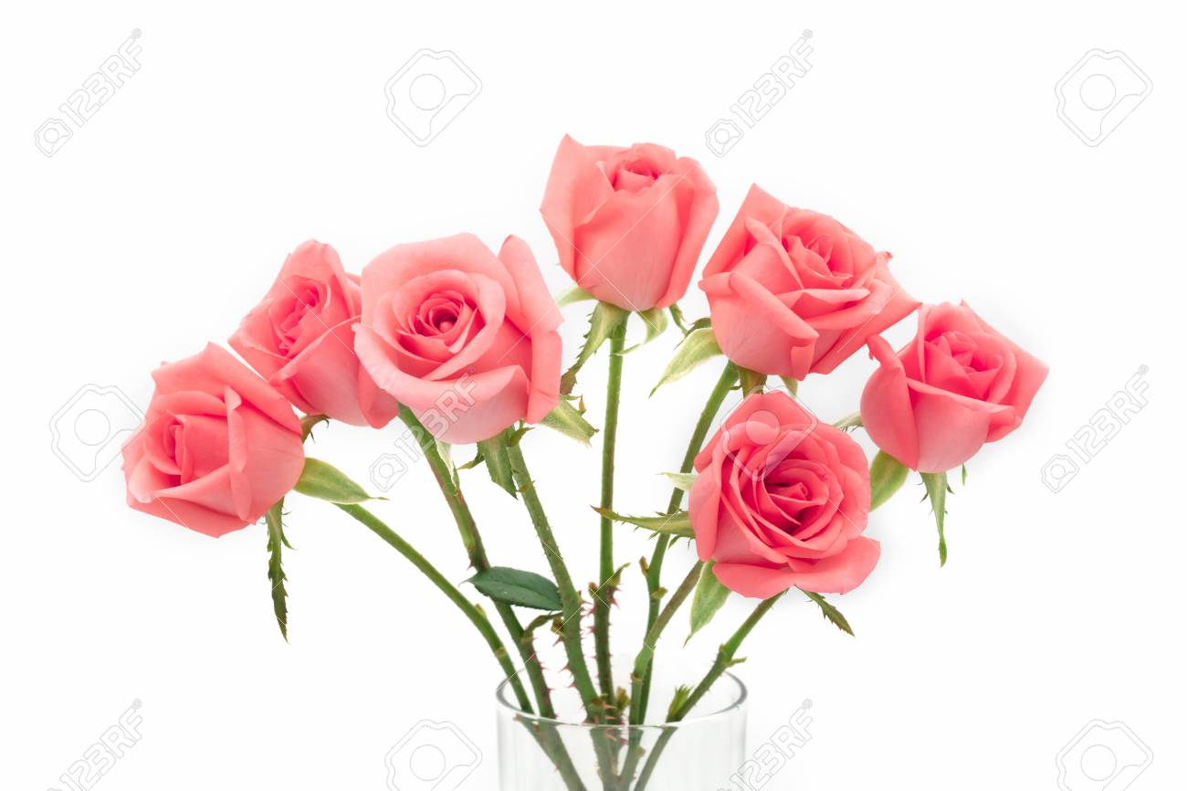 Isolate image of beautiful pink rose flower bouquet on white stock isolate image of beautiful pink rose flower bouquet on white background valentine day love mightylinksfo