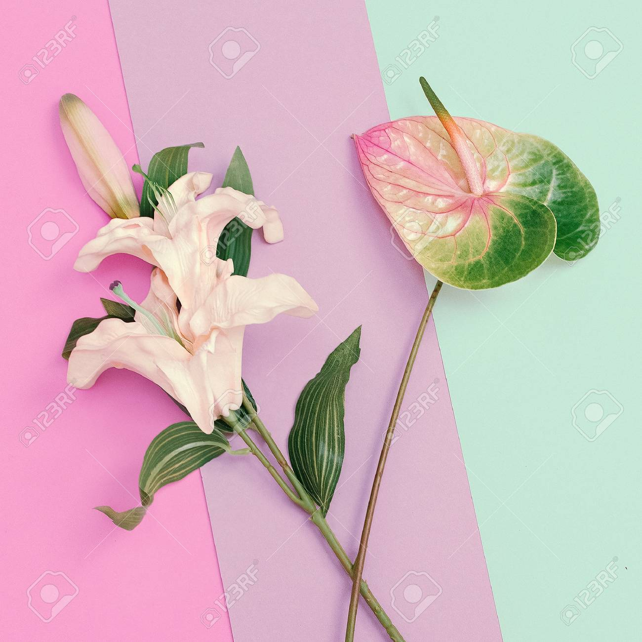 Minimalist Fashion Flowers Lily And Calla Pastel Colors Trend