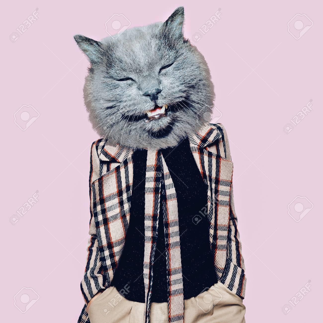 Hooligan Cat in the checkered coat Art collage. Minimal fun - 87575521
