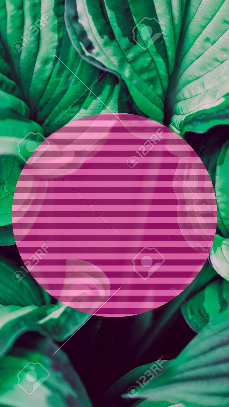 Palm Leaf And Geometry Wallpaper For Smart Phones And Desktop Stock Photo Picture And Royalty Free Image Image 150541752