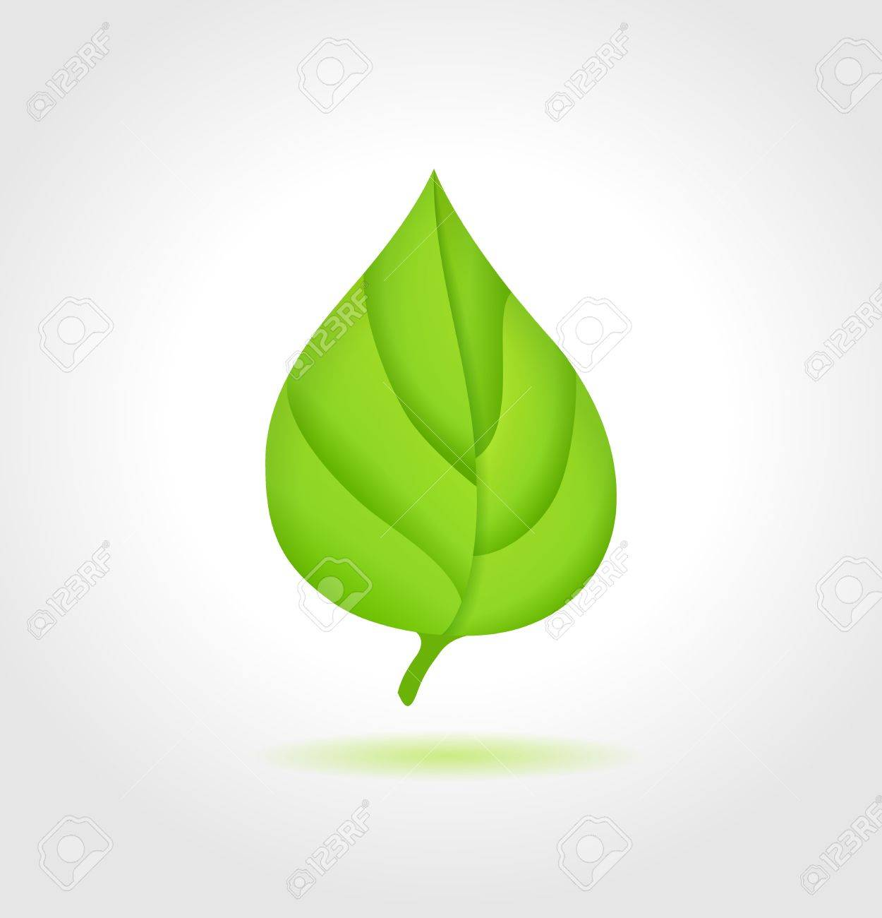 Green leaf  concept Stock Vector - 19137117