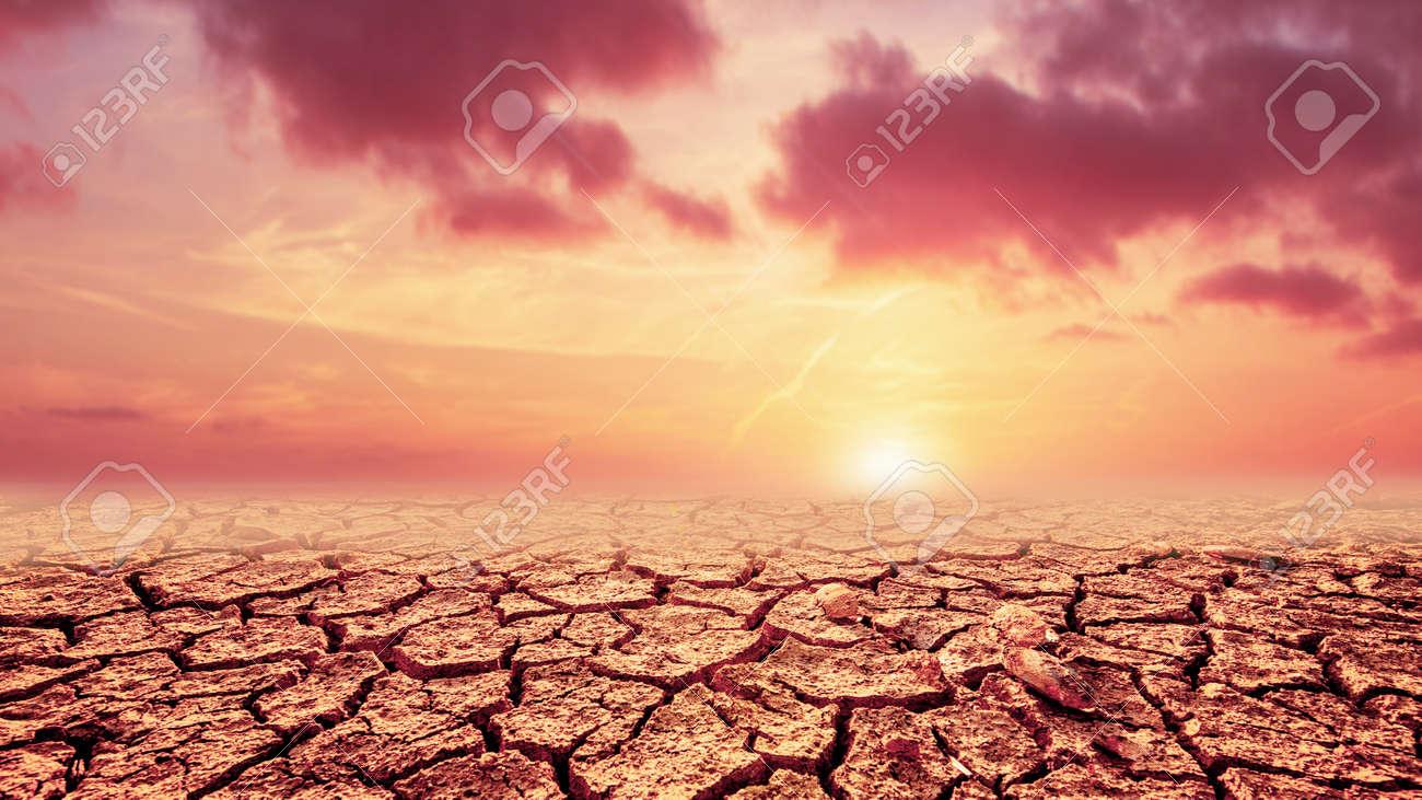 sunset over the desert - 169344204