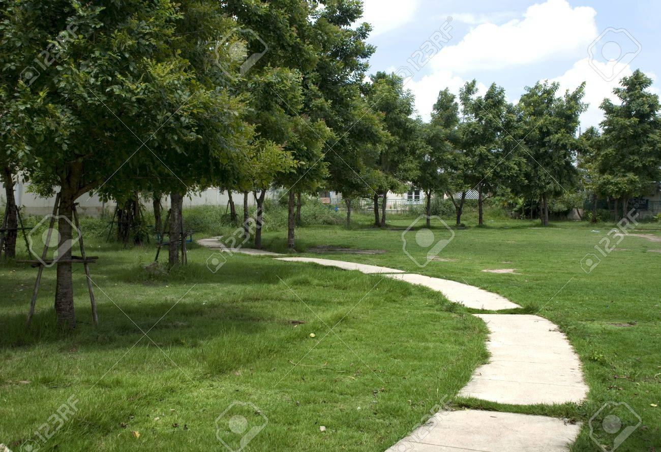 Curved road in the grass - 15177959