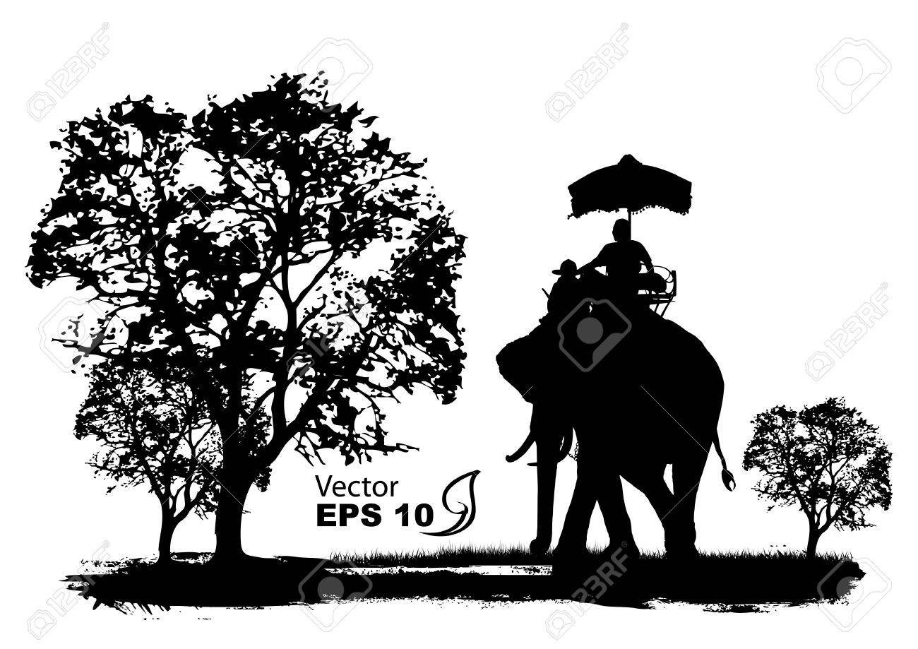 vector of elephants in thailand royalty free cliparts vectors
