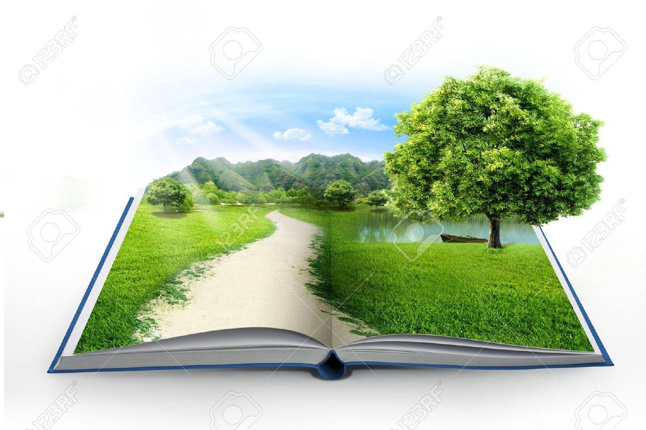 Book Of Nature Isolated On White Stock Photo, Picture And Royalty ...