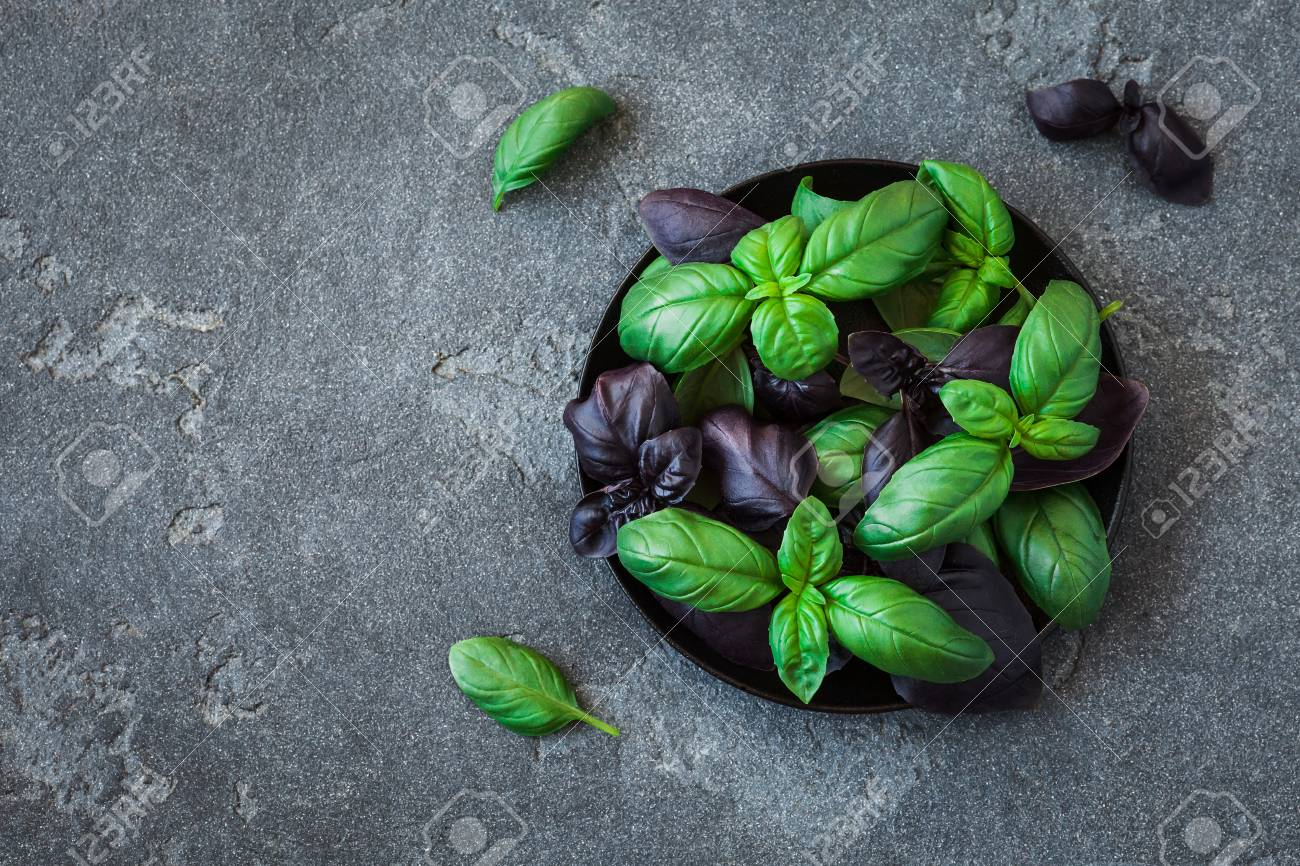 Basil in the plate. Fresh different basil on black background. Flat lay, top view - 80486712