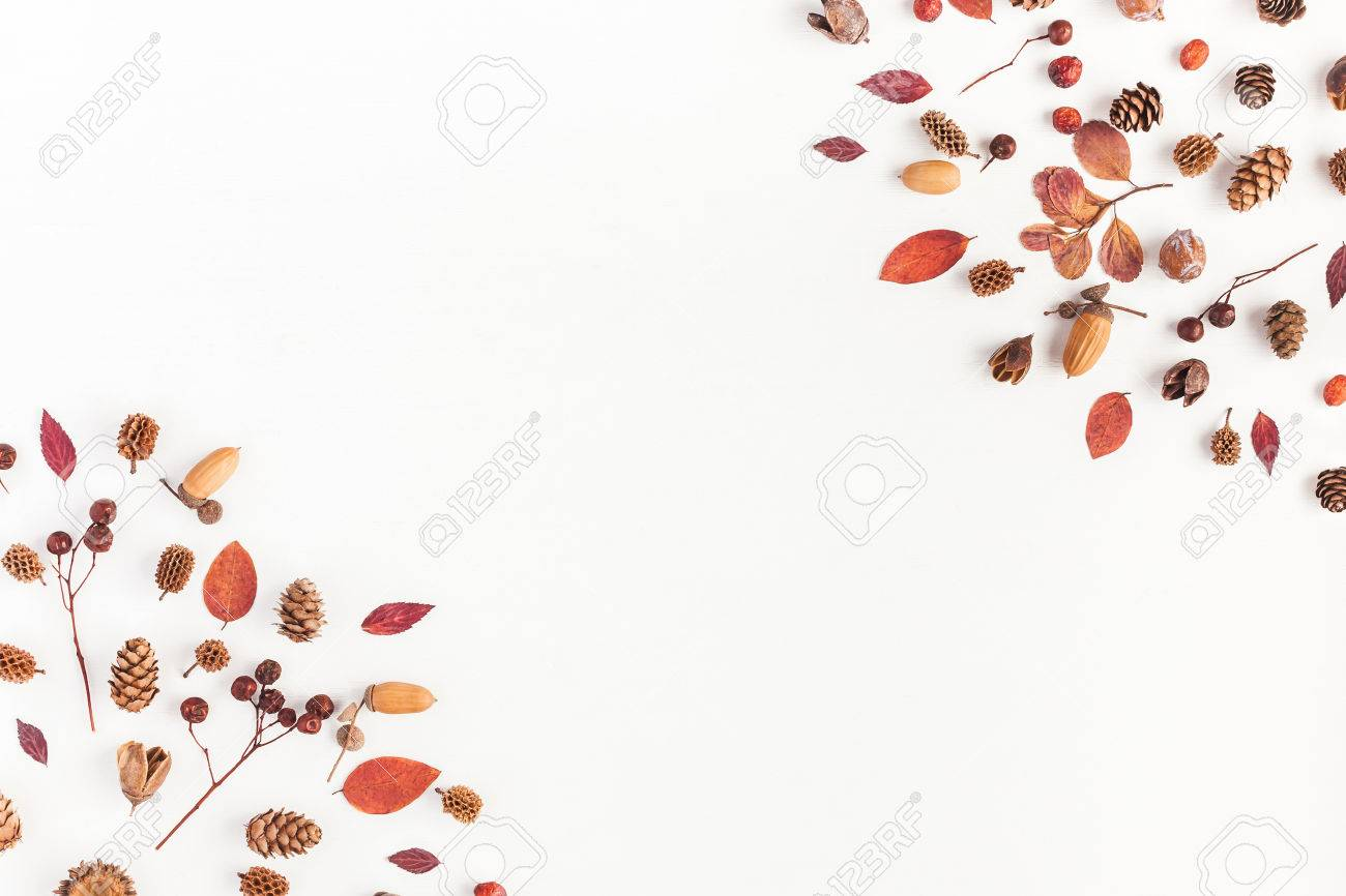 Autumn composition. Frame made of autumn leaves, acorn, pine cones on white background. Flat lay, top view, copy space - 84342908