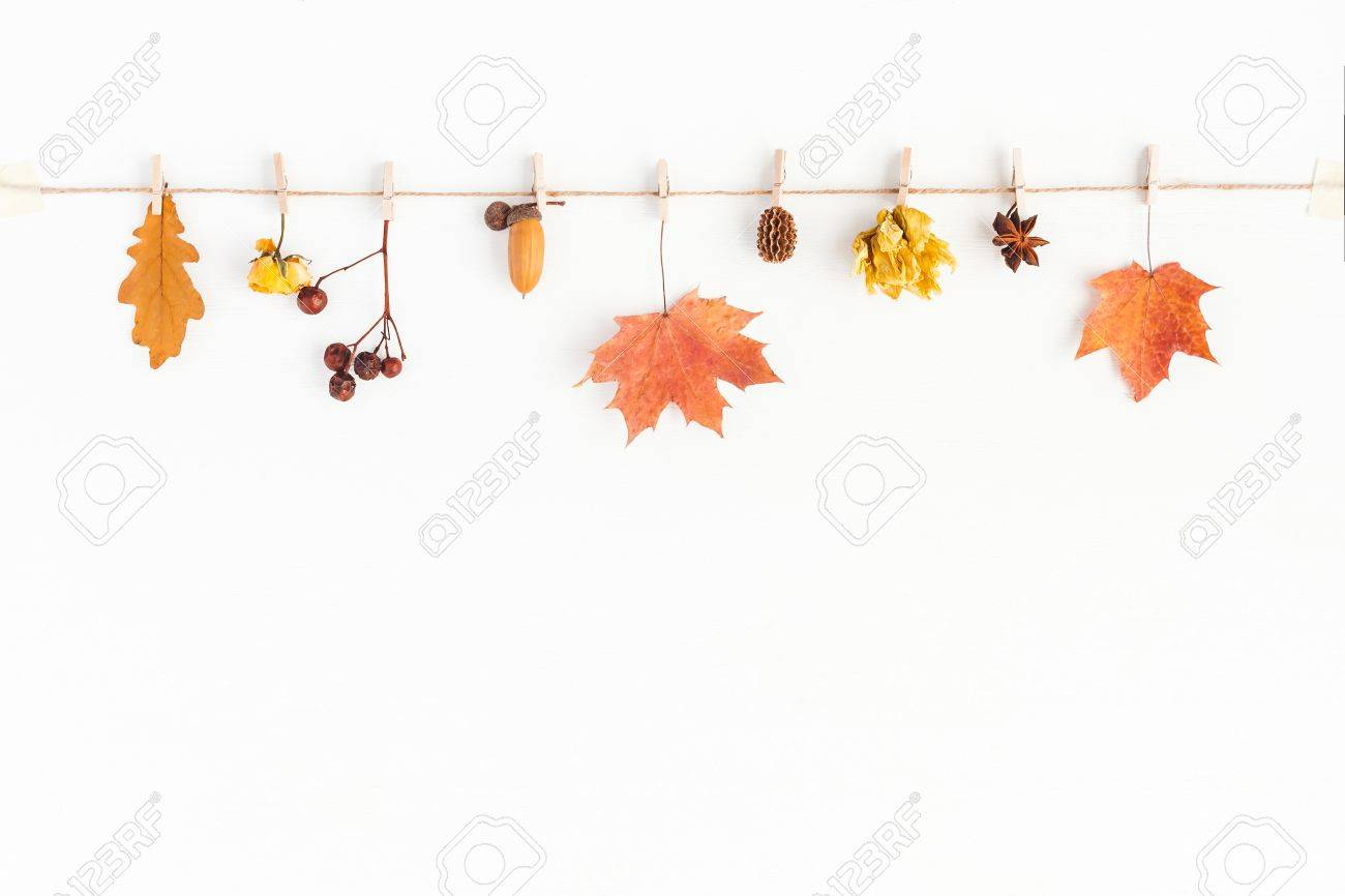 Autumn composition. Autumn flowers and leaves, acorn, pine cone, anise star. Flat lay, top view, copy space - 85322599