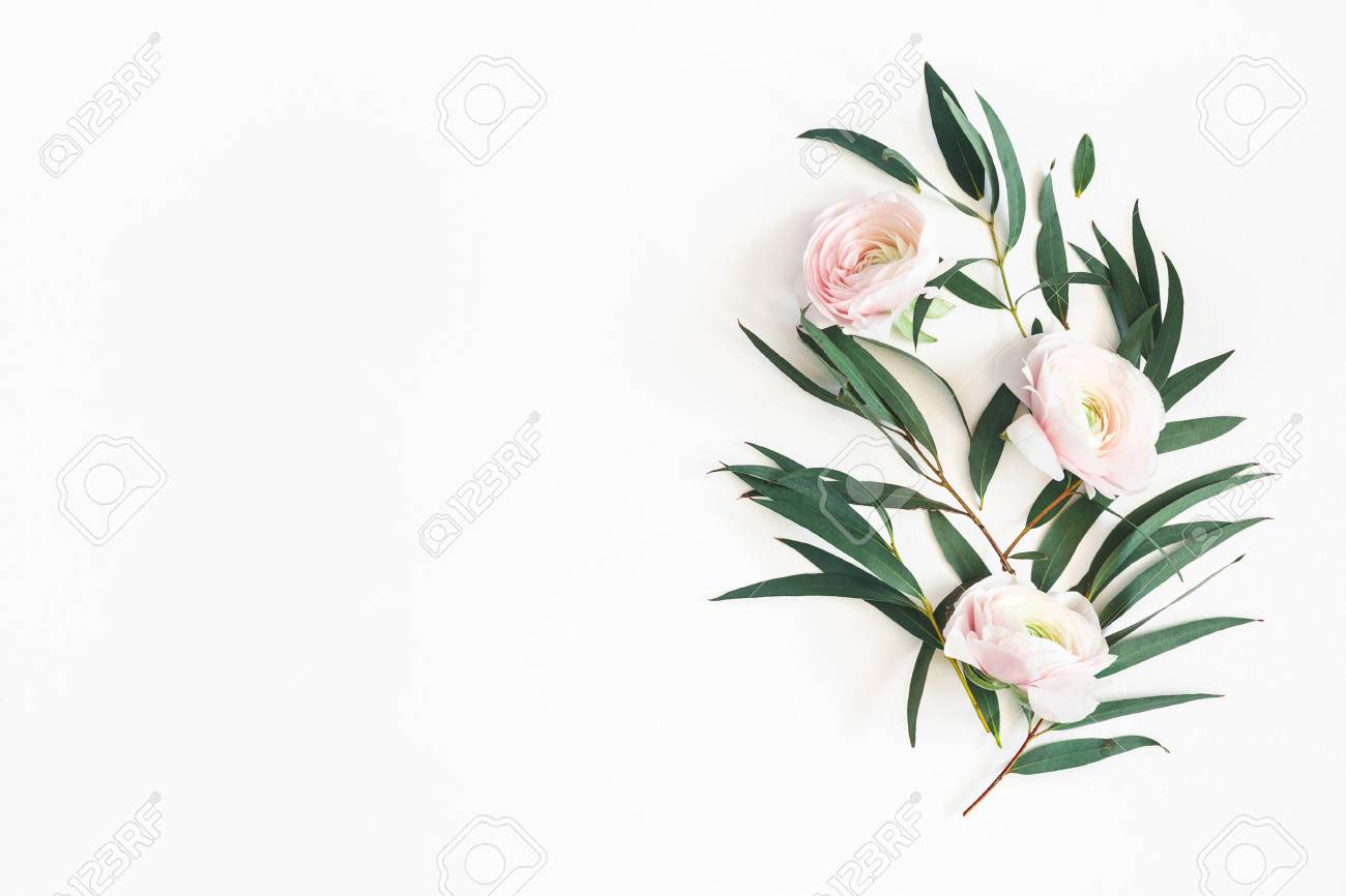 Flowers composition. Pink flowers and eucalyptus leaves on white background. Flat lay, top view, copy space - 119684301