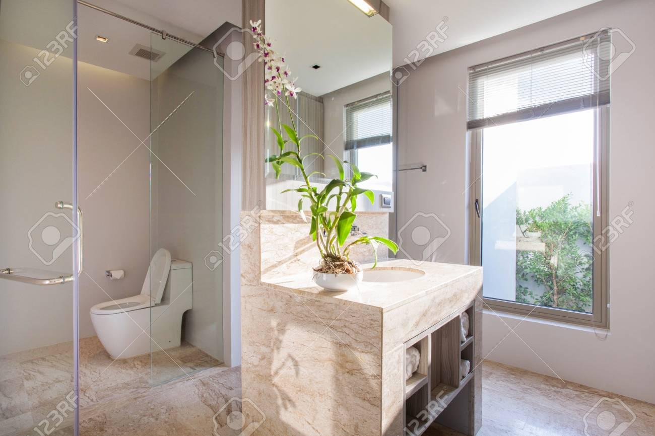 Salle De Bain De Luxe Avec Lavabo Cuvette De Toilette Banque D