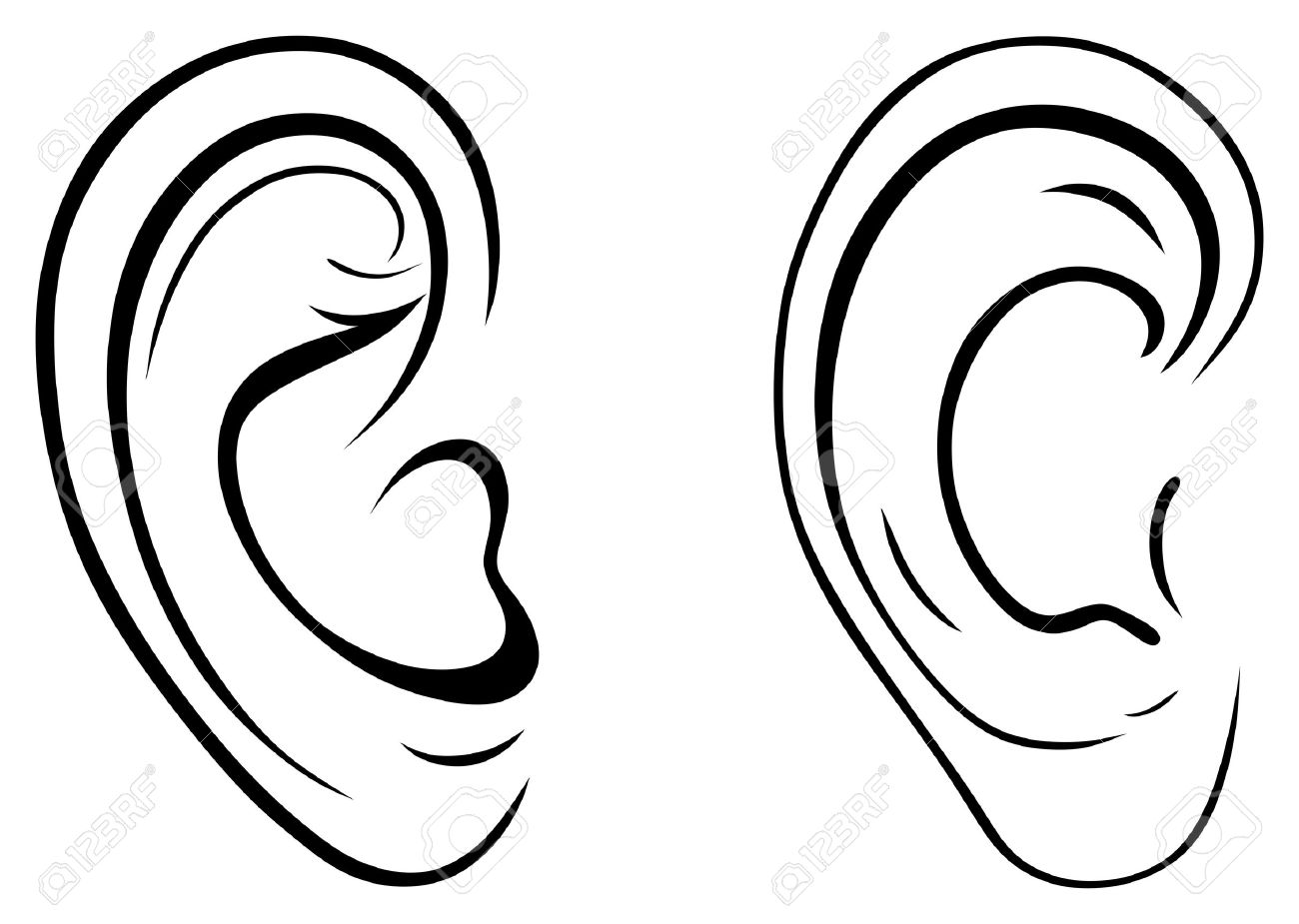 Drawing Human bE   Ear Clip Art Images