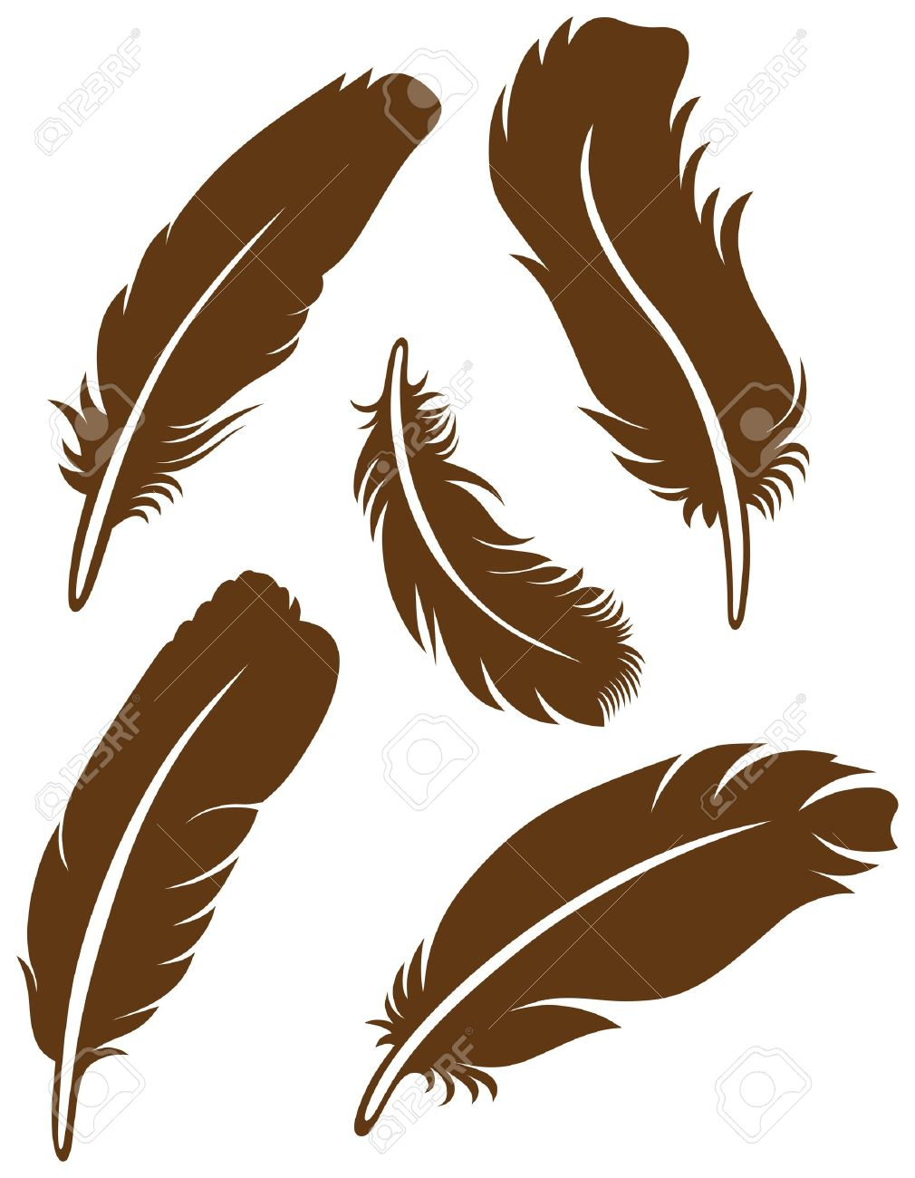 Feather Set Stock Vector - 15785571
