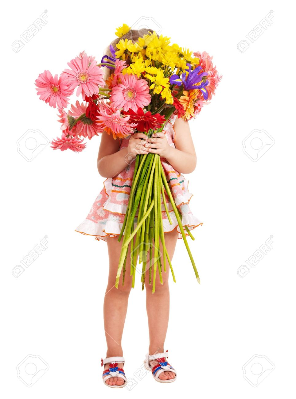 Bunch Of Flowers Stock Photos Royalty Free Bunch Of Flowers Images