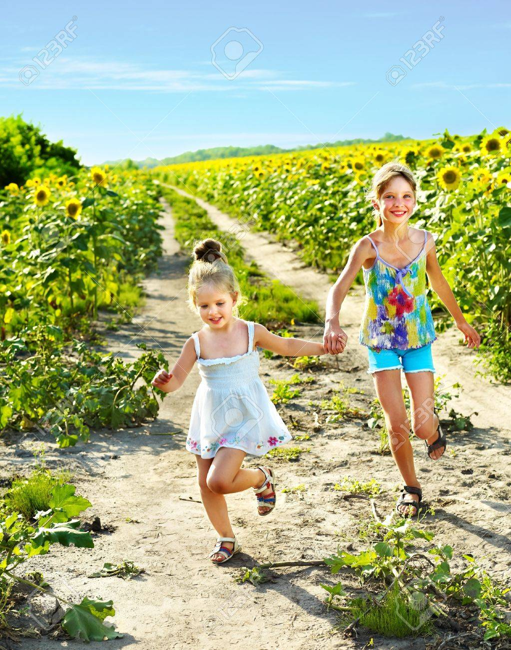 Group children running across sunflower field outdoor. Stock Photo - 10701518