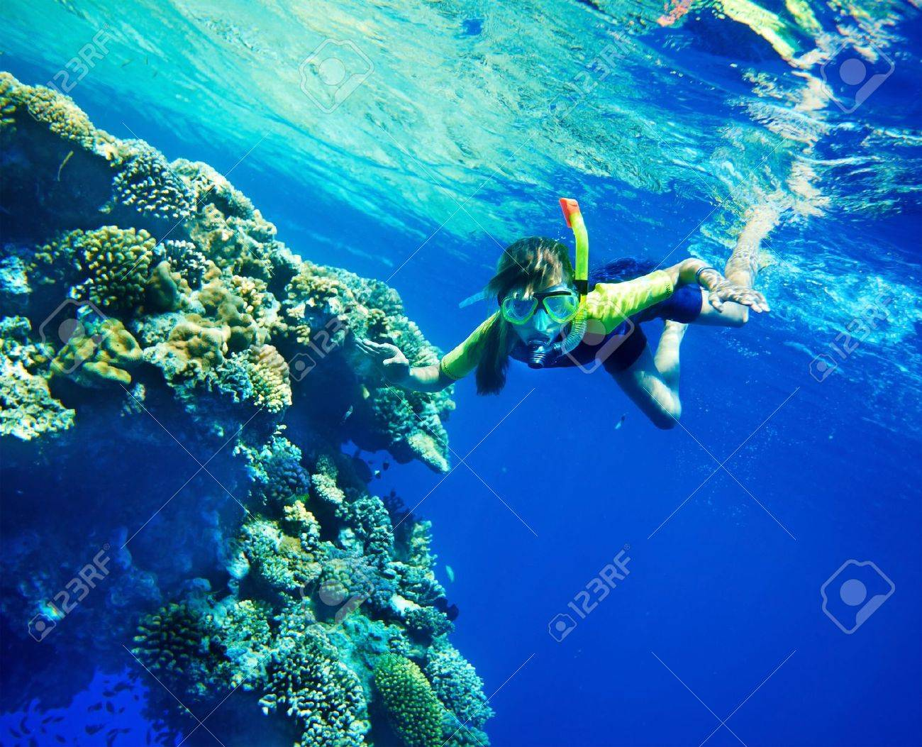 Group of coral fish in  blue water.Scuba diver. Stock Photo - 11978426