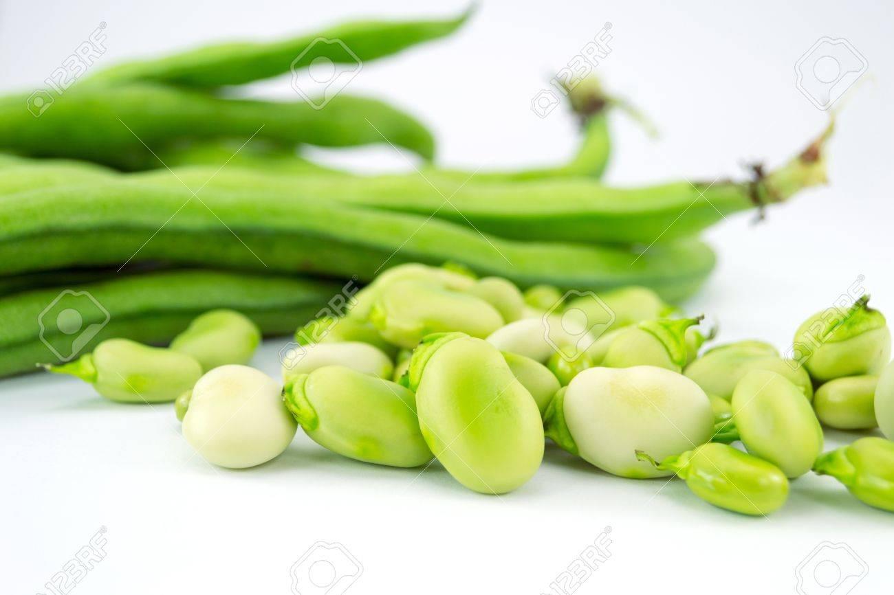 beans - 13007095