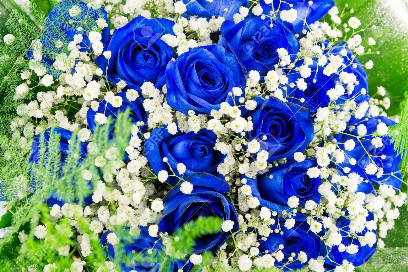 Préférence Bouquet De Fleurs Bleu-roses Banque D'Images Et Photos Libres De  CT83