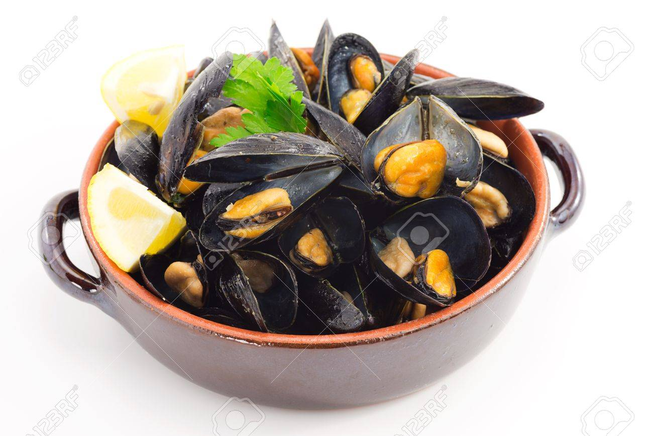 mussels - 25447994