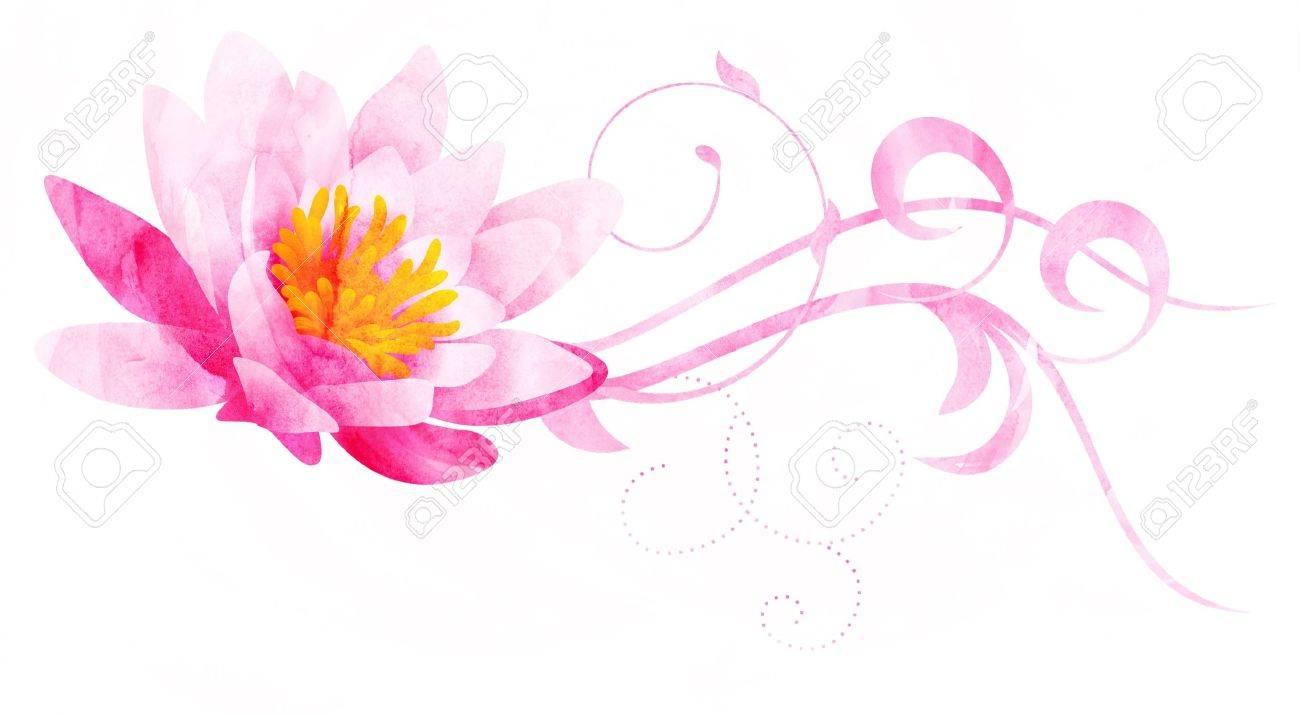 白で隔離されるピンクの睡蓮 Cg 水彩イラスト の写真素材画像素材