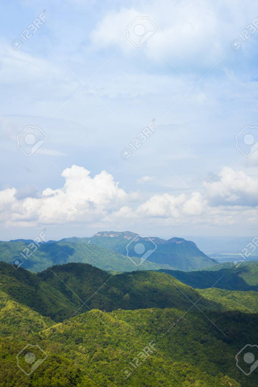 Beautiful mountain landscape. Forest and a cloudy sky - 44897922