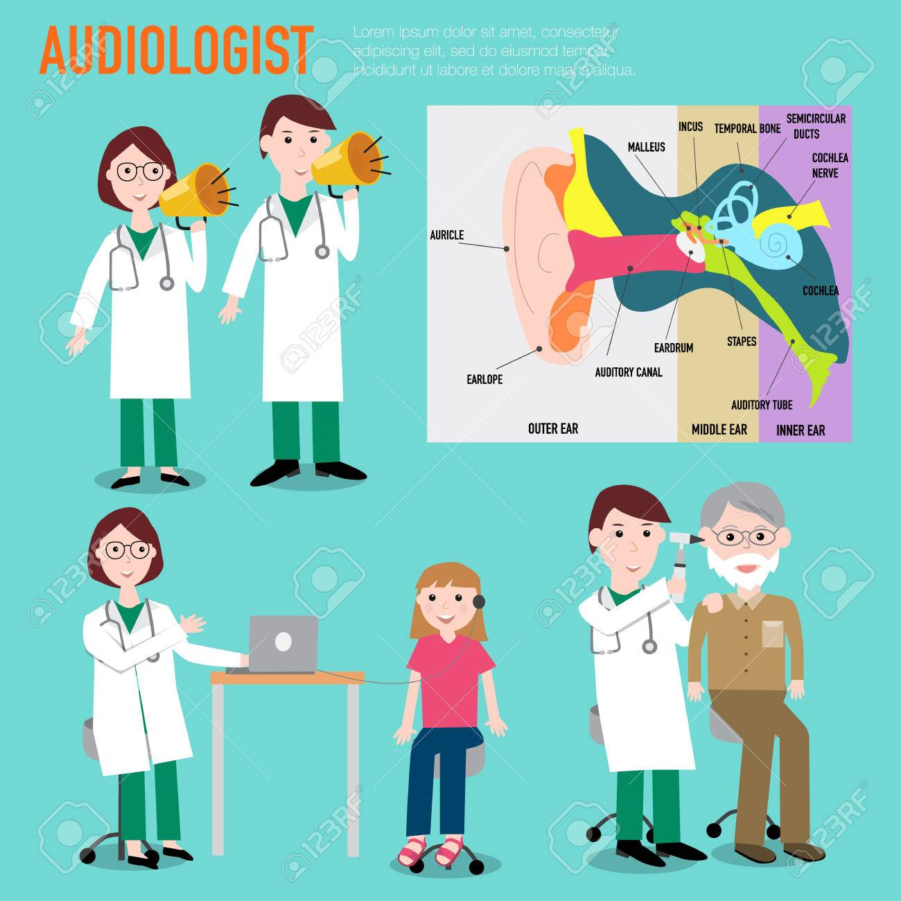 Audiologist Audiology Anatomy Of Ear Vector Infographic