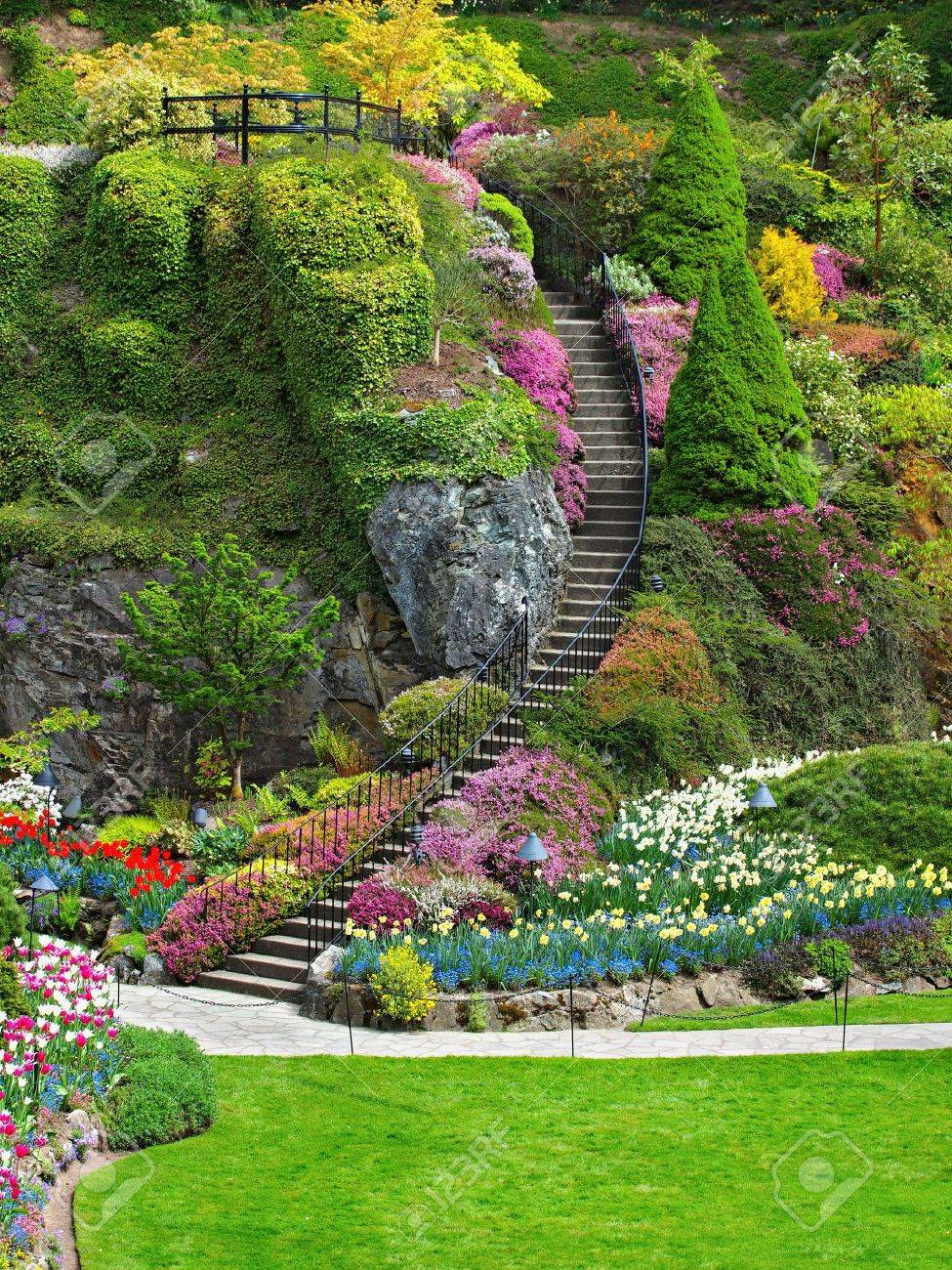 Ladder In Sunken Garden Of Butchart Gardens Victoria British