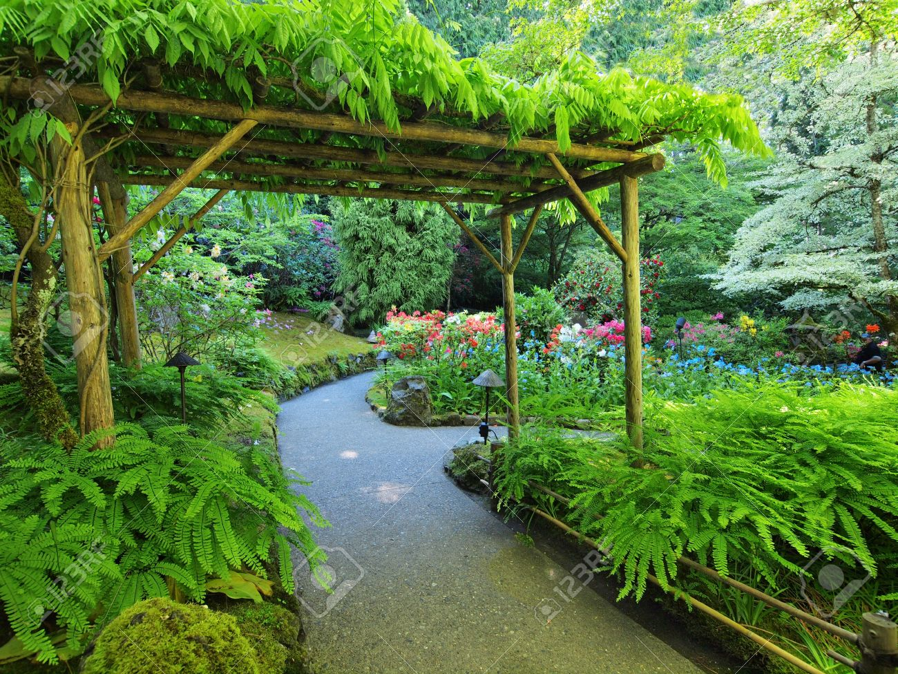 Pergola covered with climbing plants over the walkway in the lush garden  Stock Photo - 21967503 - Pergola Covered With Climbing Plants Over The Walkway In The.. Stock