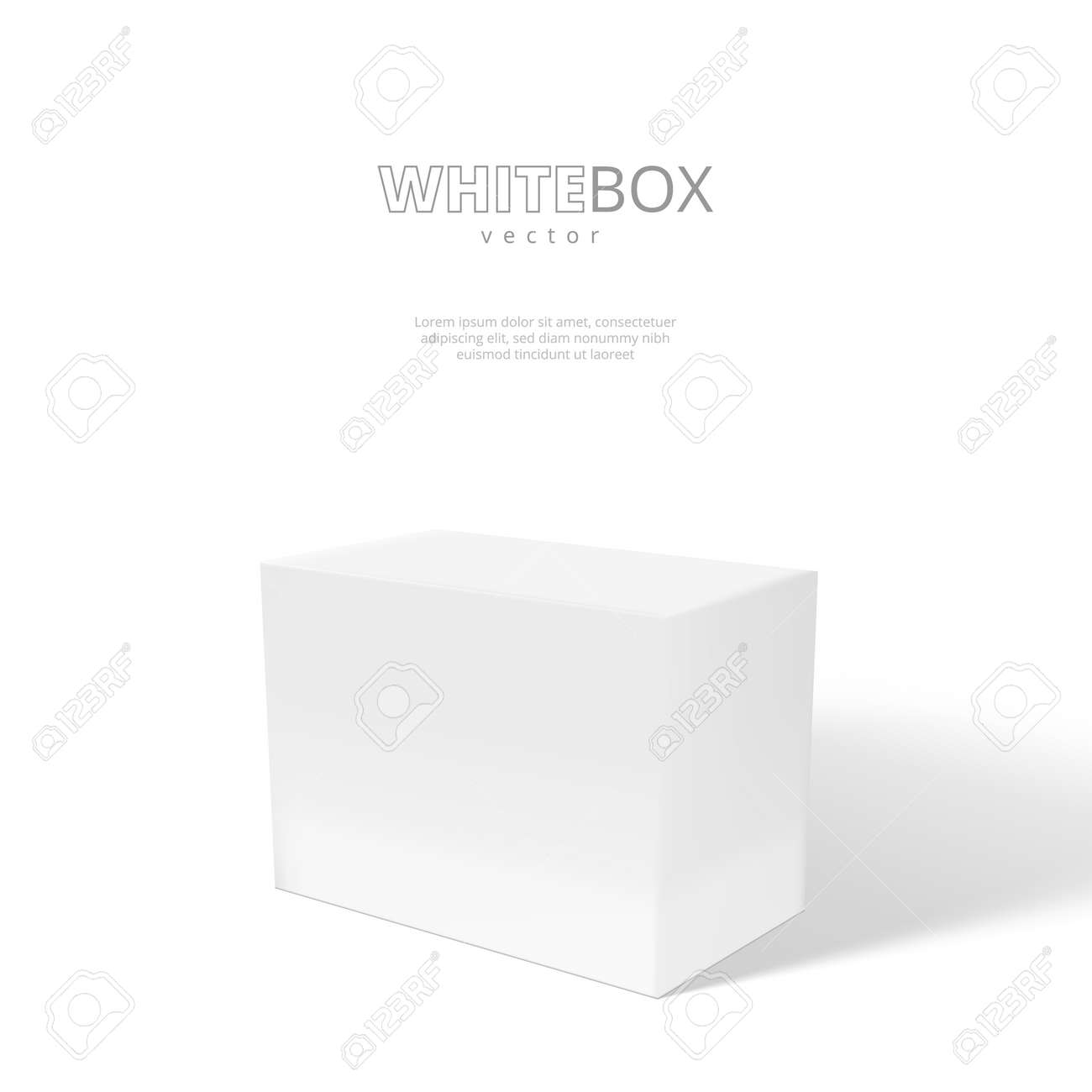 3D White Box With Shadow Isolated On Background - 169413605