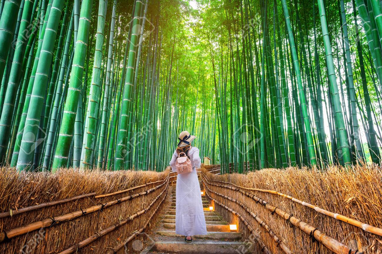 Woman walking at Bamboo Forest in Kyoto, Japan. - 128429025
