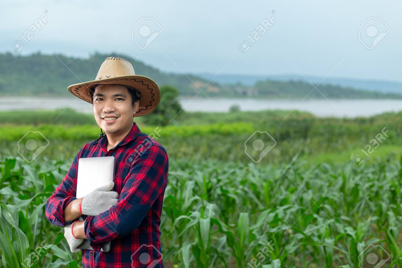 Young attractive farmer with laptop standing in corn field. - 106531321