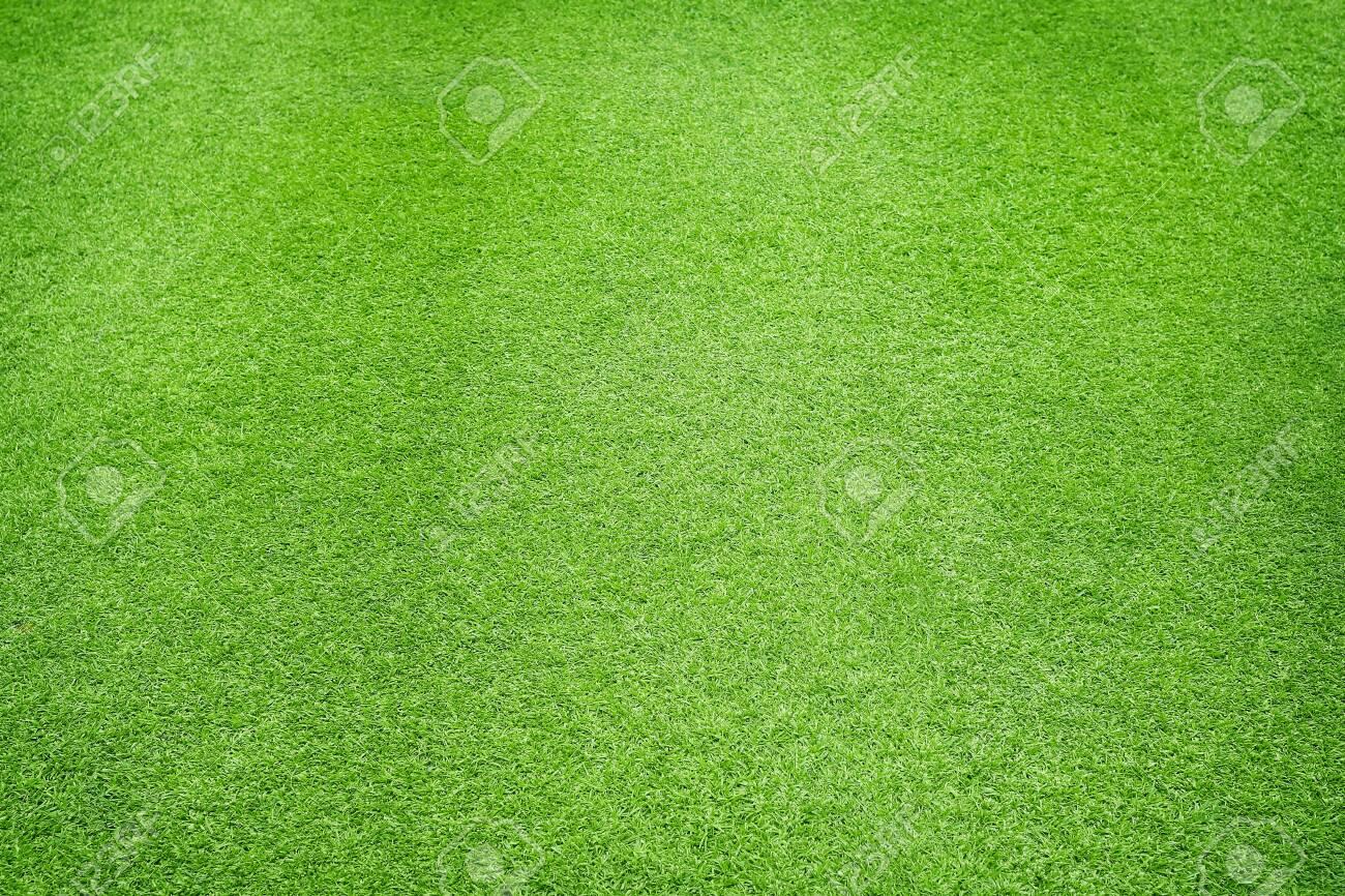 Natural Green grass texture background Close up Top view - 150619846