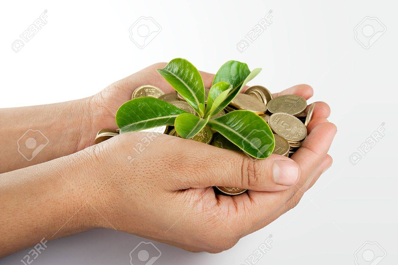 Pile of money  indian coin   in hand with plant isolated on white background Stock Photo - 14306102